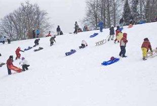 В Калининске, катаясь на санках, погиб ребенок
