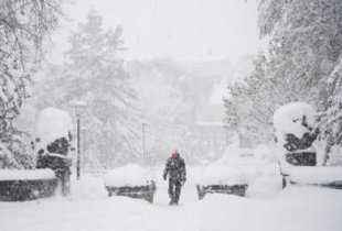 В ожидании снегопада