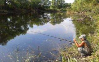 Жителям области разрешат ловить рыбу без ограничений