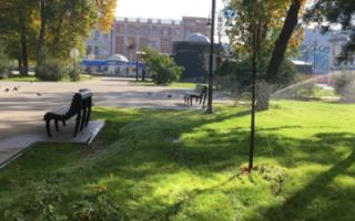 Наэтой неделе вСаратовской области ожидается потепление
