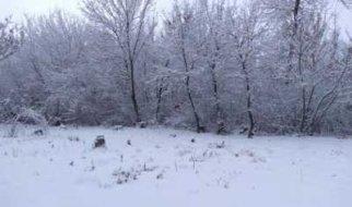 В Саратовской области ожидается аномальный холод