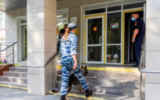 В Следкоме рассказали о готовящихся массовых убийствах в школах РФ