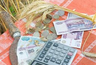 Полмиллиарда рублей несвязанной поддержки
