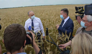 Почему высокие урожаи не отражаются на благополучии Саратовской области?