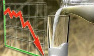 В области упало производство сыра, молока и колбасных изделий