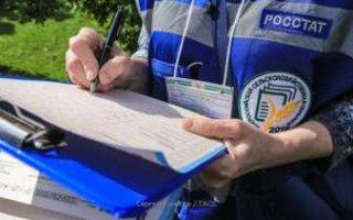 Власти страны заставляют Росстат манипулировать цифрами в отчетах