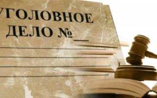 Воровка из Ивантеевки признала вину