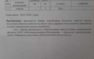 Отписки – стиль работы администрации Пугачевского района