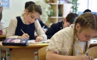 Итоговые проверочные работы для школьников могут перенести на осень следующего года
