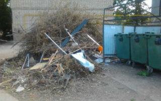 """Опрос на портале """"Пугачевское время"""": """"Кто виноват в мусорном коллапсе в Пугачеве?"""""""