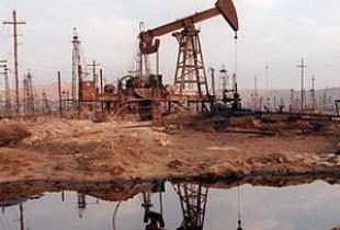 В Пугачевском районе отравили землю