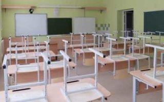 Еще в шести школах области классы ушли на дистанционку