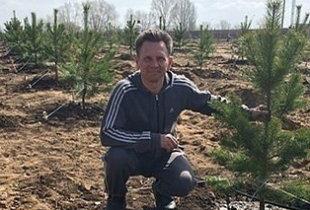 Саратовец Михаил Волков вырастил хвойный лес на месте свалки