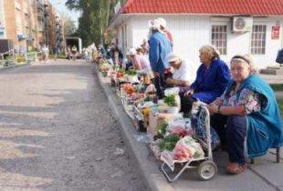 Бабушки с рассадой пополнят категорию самозанятых