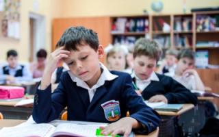 Правительство окажет помощь российским школам