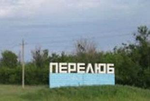 Прокуратура в Перелюбском районе вернула незаконно сданную в аренду землю