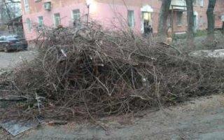 Пугачев снова завален мусором
