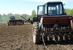 Подготовка к урожаю