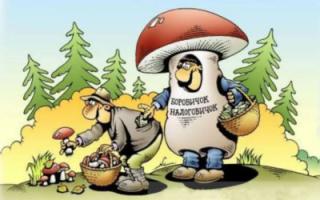 За шляпку гриба не того размера будут штрафовать