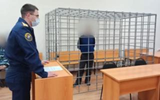 В Ивантеевском районе насильника заключили под стражу