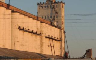 Саратовские элеваторы завышали цену хранения зерна