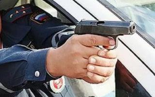 Выстрелы из табельного оружия