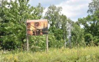 Жителям области запретили посещать леса