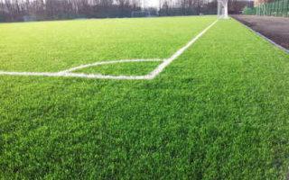 Пугачевская ДЮСШ хочет газон для футбольного поля за 10 млн. рублей