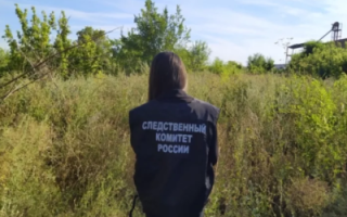 Смерть пропавшего жителя Пугачева. Подробности