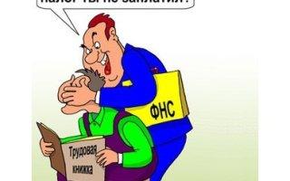 М. Делягин: Идеи налоговых маневров правительства – это безумие