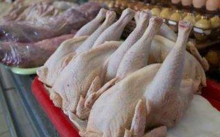 Антибиотики в курином мясе