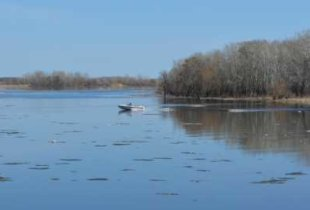 Уровень воды в Б. Иргизе поднимется на 30 см выше неблагоприятной отметки