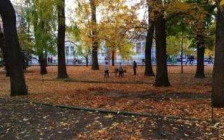Ноябрь в регионе будет теплее, чем обычно
