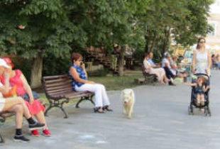 В Саратовской области ограничения из-за коронавируса продлили до 7 сентября