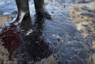 В Перелюбском районе нефтяная компания отравила землю сельхозназначения